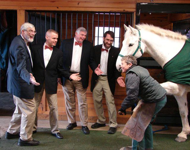 horse quartet fixed